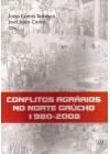 Conflitos Agrários no Norte Gaúcho. 1980-2008